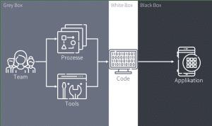 Figure 3 Gray, White and Black Box
